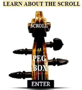 Learn about the scroll enter